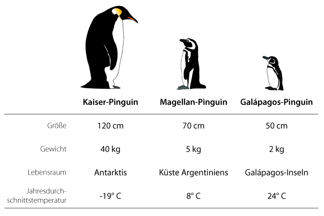 http://www.biologieunterricht.info/_Media/preview_pinguine.jpg